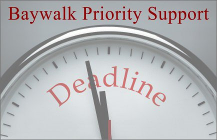 [Baywalk Priority Support]